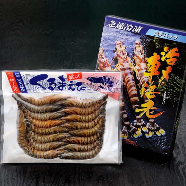通常市場に流通していない、殻ごと食べられる大変希少な一品です!ソフトシェル車海老 車海老日本株式会社・鹿児島県