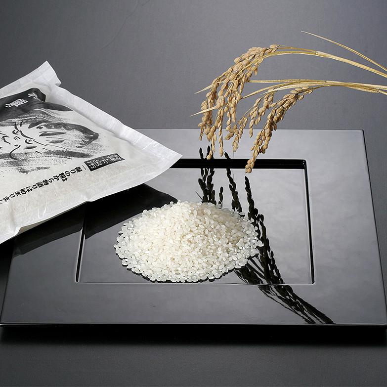 龍の瞳(5kg×2袋)ギフト 株式会社龍の瞳 岐阜県 飛騨地方の下呂市で、偶然発見された米「いのちの壱」。数々の全国コンクールで最優秀賞などを幾度も受賞。