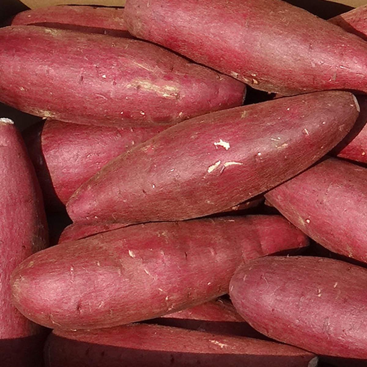 サラダファイブ 濃厚しっとり甘いさつまいも 茨城県産シルクスイート A等級 Lサイズ〔2kg〕
