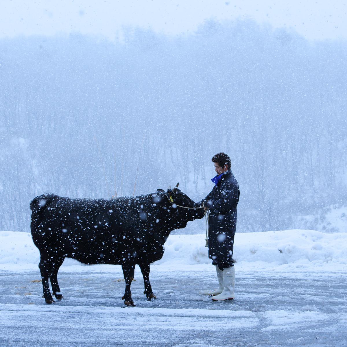 金鶴 雪降り和牛尾花沢 グリルカットステーキ〔200g〕山形県