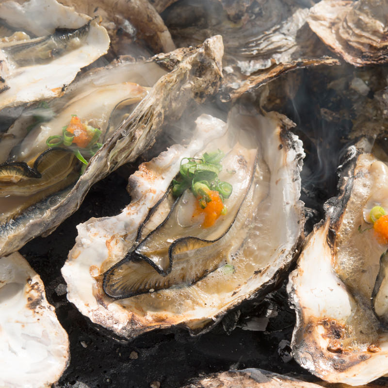 広島県産 業者直送 ぷりっと濃厚 殻付き牡蠣[加熱用]と牡蠣燻製セット〔牡蠣約60粒・燻製6粒・牡蠣ナイフ・軍手〕