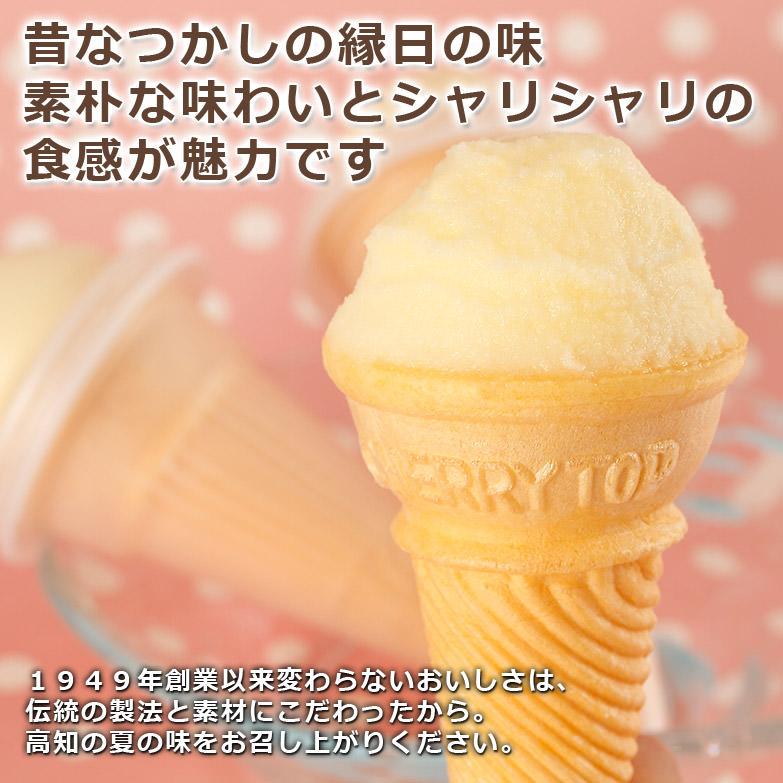土佐の伝統製法 高知の夏味〈 よさこいアイスクリン 〉5本入 | 有限会社さめうらフーズ・高知県