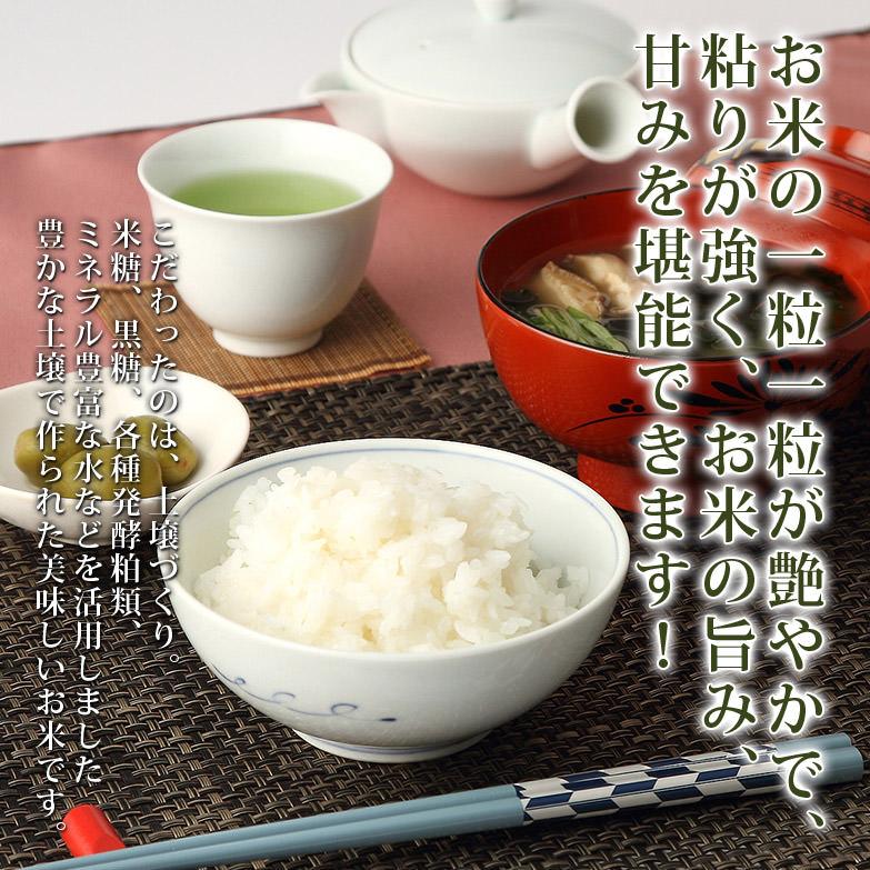 こだわりの米作りは栄養豊富な土壌から とちぎ本郷米〈10kg 〉 | 沼光園・栃木県
