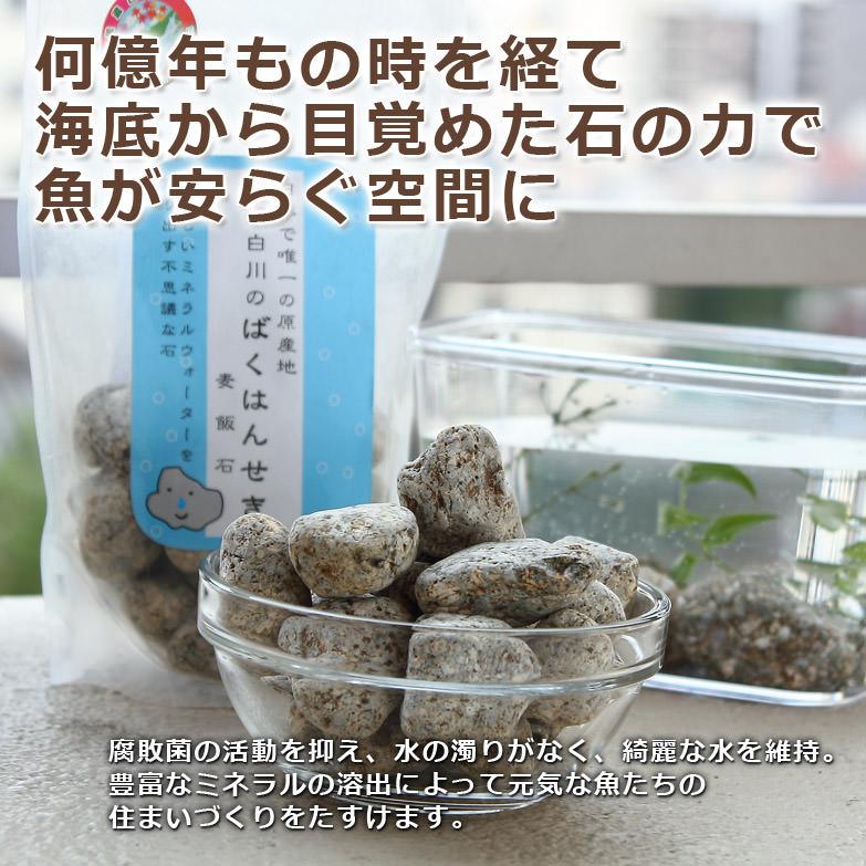 元気な魚と綺麗な水 〈麦飯石 500g〉養魚用 | 美濃白川麦飯石株式会社・岐阜県