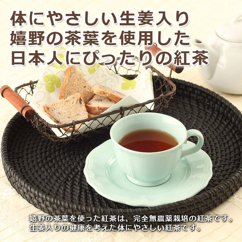 嬉野茶葉を使用して 体に優しく温まる紅茶 うれしの和紅茶 生姜入り ティーバック 山輝園 佐賀県〔ティーバック:2g×20パック〕