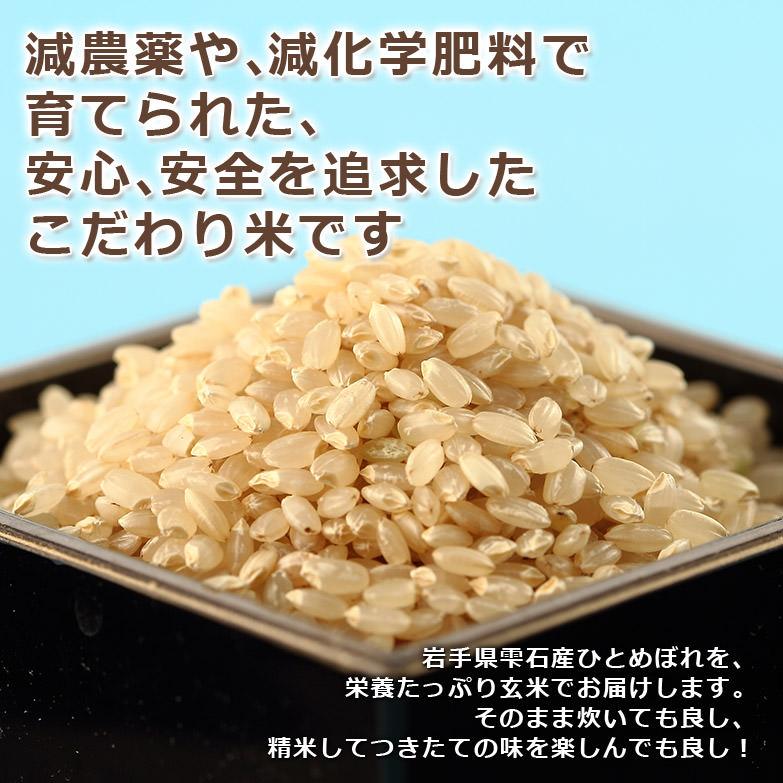ふっくらもちもち食感 噛むほど甘い 〈 たんたん米・玄米 〉5kg | 有限会社ファーム菅久・岩手県