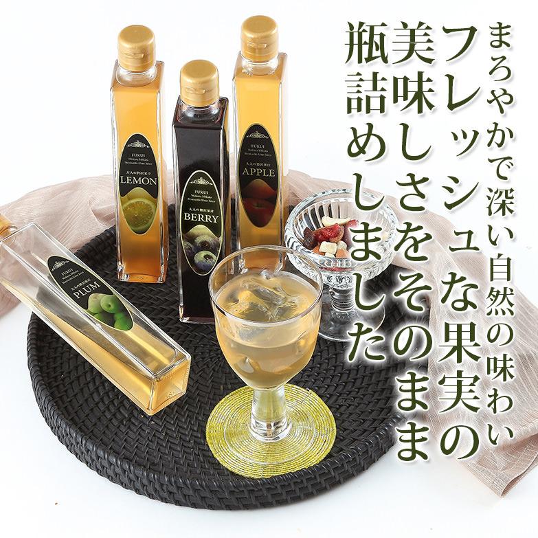 とっておきのひととき 大人の贅沢果汁セット(4本入り) (株)エコファームみかた・福井県