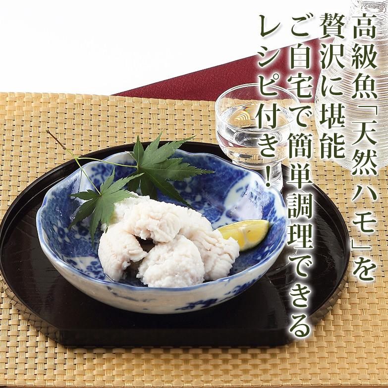 志布志湾で獲れた高級魚 「天然ハモ」のフィレ