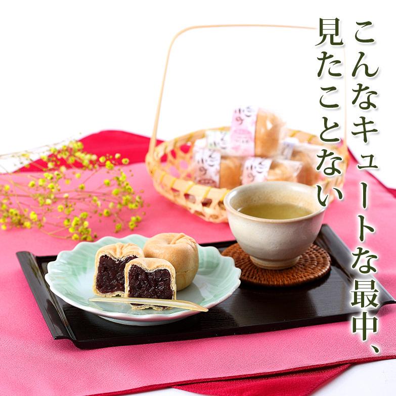 小ぶりでキュートな4種類の味。 りんご小町20コ入 お菓子処つしま堂・青森県