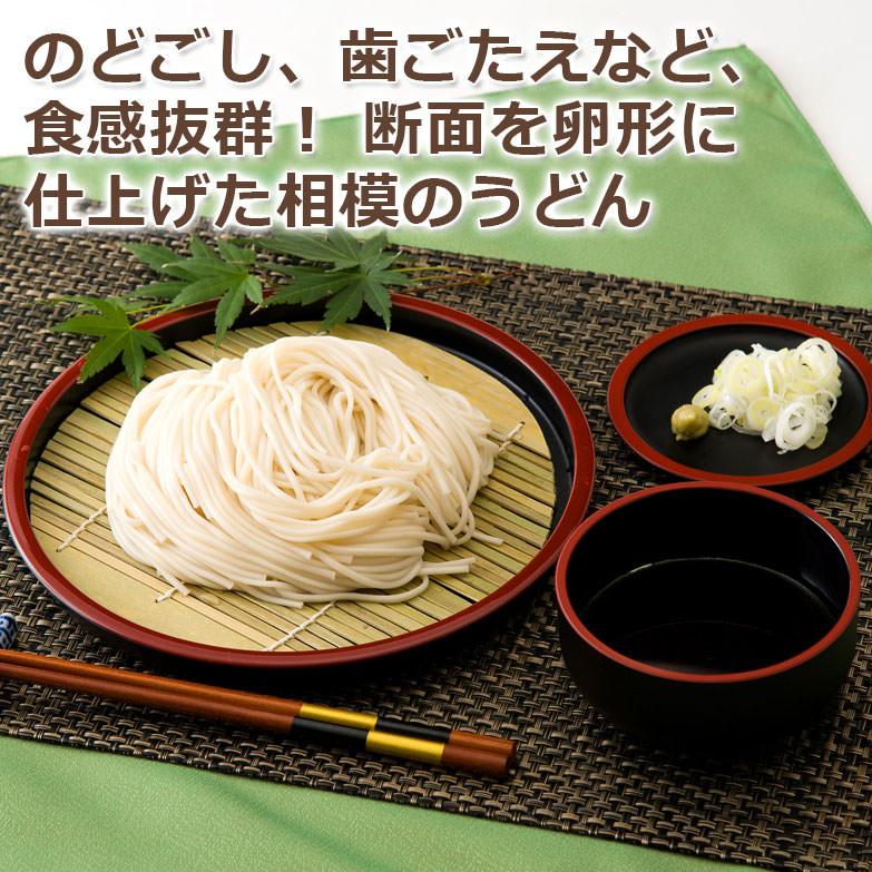 地元・相模をイメージした究極の麺 相模の麺(うどん)