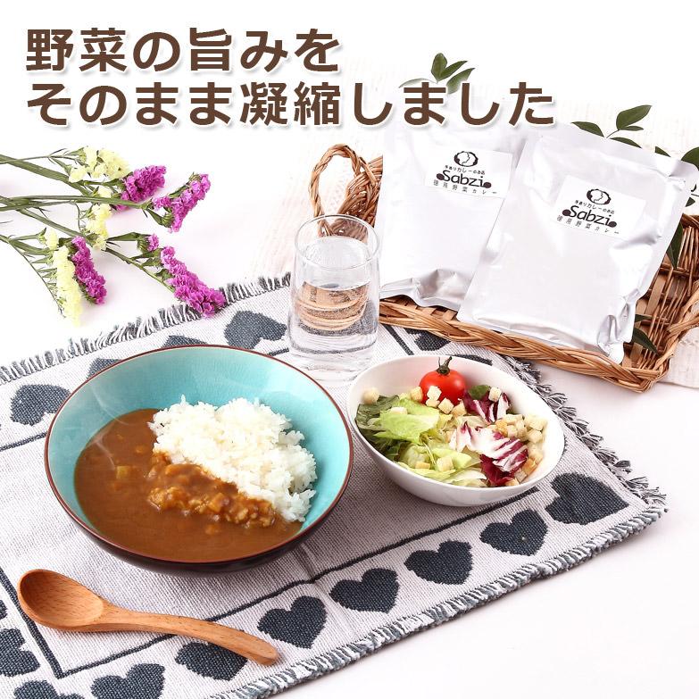 福岡のカレー専門店 サブジ監修徳用野菜カレー(10食入り)