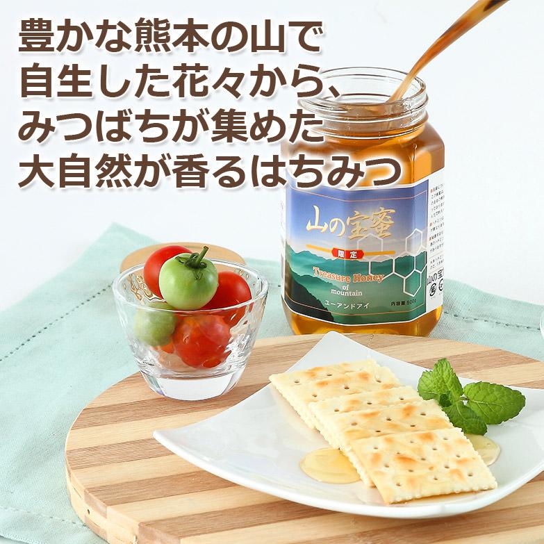 自然の恵みで採取された クセになるコクと香りのはちみつ 熊本産山の宝はちみつ