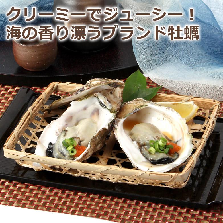 海のミルクを存分に味わう  漁師直送、松江いわがきMサイズ10個