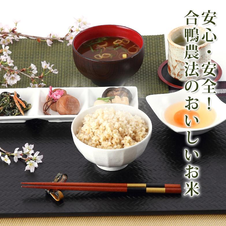 農薬を使わずに育てた 合鴨米 玄米5kg
