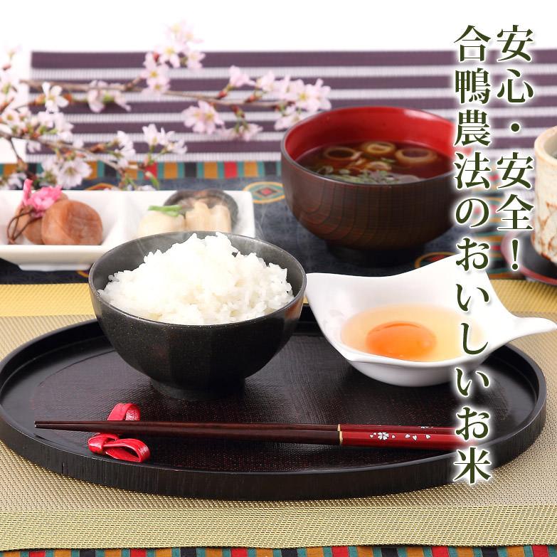 農薬を使わずに育てた 合鴨米 精米3kg