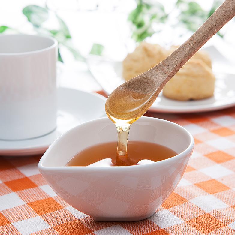蜂蜜(600g2本セット) 森下友蜂堂 富山県 皇室献上品。トチの花を蜜源とする芳醇な香りと甘みのある蜂蜜です