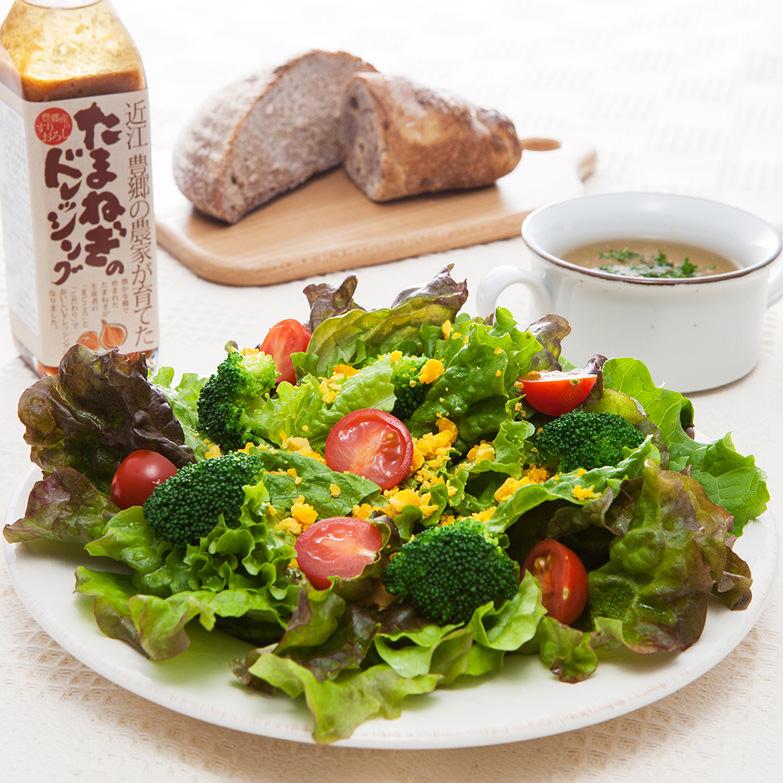 近江豊郷農家の贈り物 IK2-50S 株式会社市川農場 滋賀県 国内外でも人気のドレッシングとスープの詰め合せ