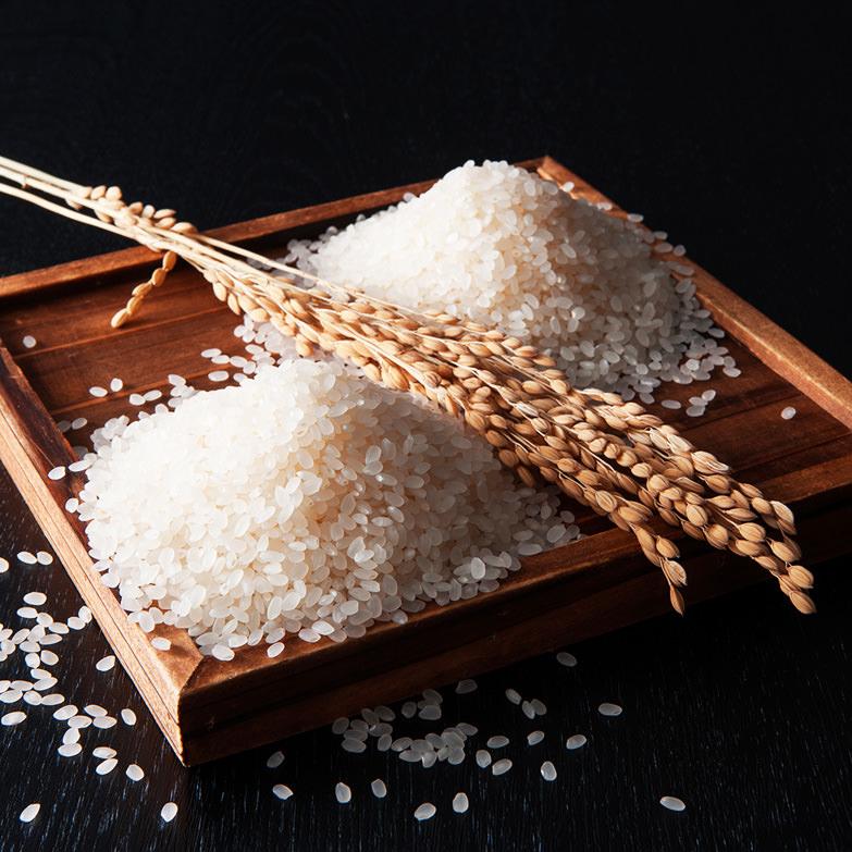 こしひかり食べくらべセットA 栗原精穀 埼玉県 新潟と福島会津美里町の1等米「こしひかり」をこだわりの精米技術で仕上げました