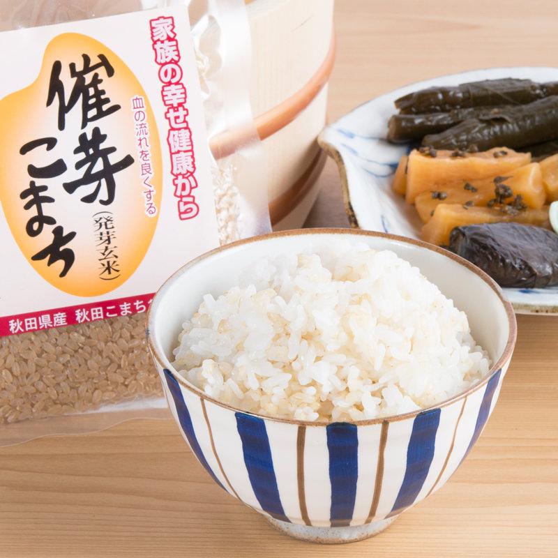 秋田県鹿角の伝統漬物 しそ巻大根 しそ巻漬物と発芽玄米セット A〔漬物5種・発芽玄米〕