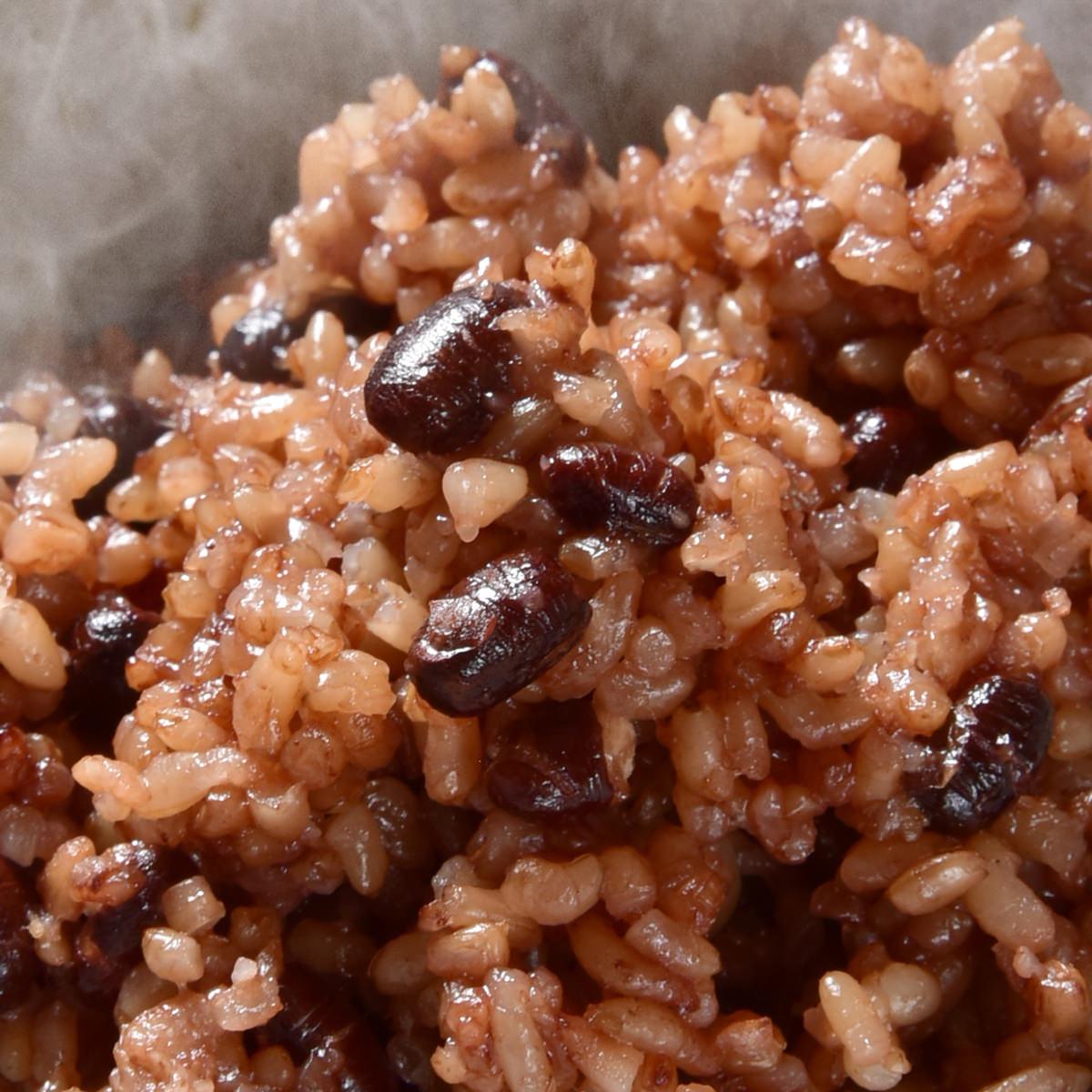 春日屋 レンジ対応! 3日寝かせ 発芽酵素玄米ごはん 12食 冷凍〔125g×12〕