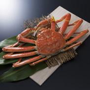 越前がに 大 有限会社前崎鮮魚店 福井県 福井の味覚の王様 越前がに。選りすぐりの大きなサイズを絶妙の茹で加減でお届け