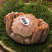 雄武産特上毛蟹(560g) 蟹蔵 成瀬 北海道 希少価値の高い流氷明けの堅毛蟹をオホーツクから直送。