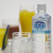 名水のふるさと「垂水」からの贈り物 天然ゲルマニウムの温泉水(500ml×40本) 美豊泉・鹿児島県