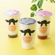 トロケッテ・ウーノ 8個 株式会社宇野牧場 北海道 プリンやヨーグルトとは異なるトロッとクリーミーな食感