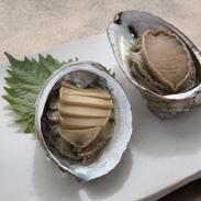 白神そだちの白神あわび(煮貝2個入り) 日本白神水産株式会社 秋田県 磯の風味が抜群!白神あわびを醤油だれで煮込みました。