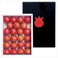 リサ・フルーツトマト 化粧箱入り 〔約2kg〕 トマト 野菜 高知 おかざき農園