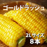 北海道十勝産とうもろこし ゴールドラッシュ 2Lサイズ 8本〔約3kg〕