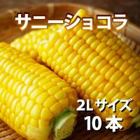 オビプロファーム 北海道十勝産とうもろこし サニーショコラ 2Lサイズ 10本〔約3.8kg〕