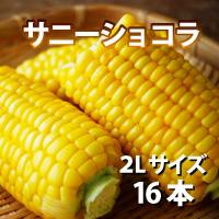 オビプロファーム 北海道十勝産とうもろこし サニーショコラ 2Lサイズ 16本〔約6kg〕
