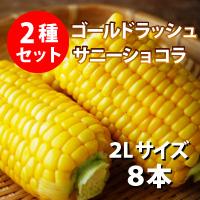 オビプロファーム 北海道十勝産とうもろこし セット ゴールドラッシュ サニーショコラ 2L 8本〔約3kg〕