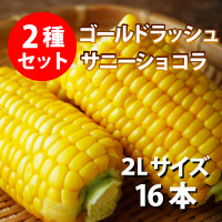 オビプロファーム 北海道十勝産とうもろこし セット ゴールドラッシュ サニーショコラ 2L 16本〔約6kg〕