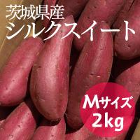 サラダファイブ 濃厚で甘いブランド芋 茨城県産さつまいも シルクスイート A等級〔Mサイズ2kg〕