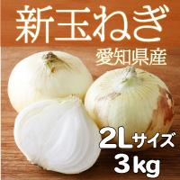 サラダファイブ 生でも美味しい 辛みが少なくやわらかい 愛知県産新玉ねぎ〔2Lサイズ3kg〕