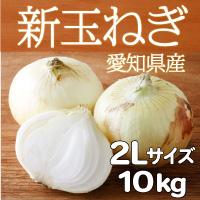 サラダファイブ 生でも美味しい 辛みが少なくやわらかい 愛知県産新玉ねぎ〔2Lサイズ10kg〕