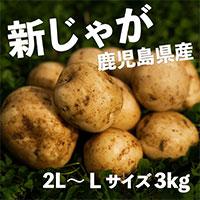 サラダファイブ 皮が薄くてみずみずしい 鹿児島県・長崎県産 新じゃがいも ニシユタカ 秀品〔2L〜Lサイズ3kg〕