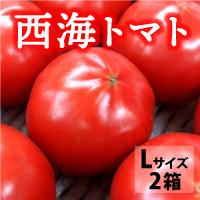 サラダファイブ 天然の美味しさがぎゅっと凝縮 長崎県産高糖度トマト 西海トマト〔Lサイズ3kg×2箱〕