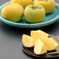 岐阜県産 太秋柿 秀品4L 約3kg 〔4L×9〕 産地直送 果物 サラダファイブ