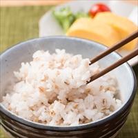 まんでがん 国産ブランドもち麦 大容量 小分けタイプ2kg 香川県産 讃岐もち麦 ダイシモチ〔500g×4〕