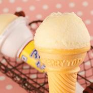 土佐の伝統製法 高知の夏味〈 アイスクリンコーン 〉 | 有限会社さめうらフーズ・高知県