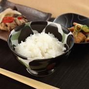 ふっくらもちもち食感 噛むほど甘い 〈 たんたん米 〉5kg・乾式無洗米 | 有限会社ファーム菅久・岩手県