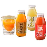 復泉会 静岡県 果実味たっぷりのストレートジュースと果汁飲料 おすすめ12本セット〔全3種12本〕