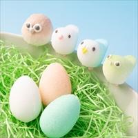 小鳥シュガークラフトセット 〔固型砂糖19個〕 福島県 砂糖 お菓子のアトリエ