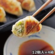 鹿児島黒豚生餃子 4箱 〔生餃子(16g×12個)×4箱、たれ13g×4個〕