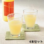 長野県産ふじりんごジュース 100% 4本セット〔1000ml×4入り〕