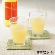 長野県産 ふじりんごジュース 100%  〔1000ml×8本〕