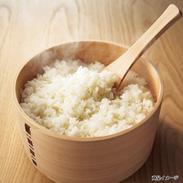 秋田県桧山産 特別栽培米自然乾燥の桧山こまち 〔あきたこまち、5�s×4〕